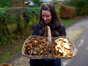 Lisa basket winter chanterelles NF 20 Dec 2015